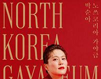 Concert Park Soona : North Korea Gayageum