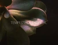 "Teaser Stop Motion - ""Tempestade Tropical"""