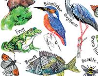 Hennie Haworth - Walthamstow Wetlands