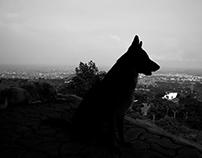 Fotografìa a blanco y negro.