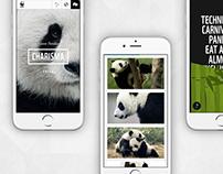 WWF Universal App