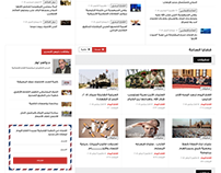 Alfath Alyom Newspaper Website