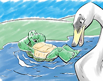 Turtle and Swan Story