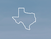 Web Design: Texas Wealth Design Website