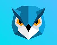 🦉 Owl Illustration
