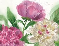 Flowers. Watercolours
