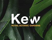 Kew - Royal botanic garden