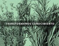 Diseño editorial Facultad de Agronomía.