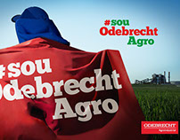 Odebrecht Agroindustrial - Relatório Anual 2016