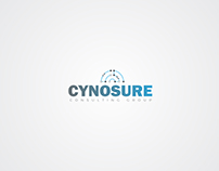 Cynosure, Consulting Group