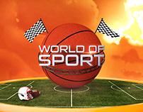 WORLD OF SPORT Opening Packaging Design