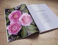 Camellia Bridal Magazine Spread
