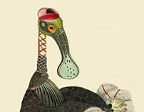 Infertile Birds: Genus Aphelosomus (collage)