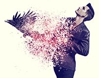 # Disintegration effect
