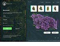 intranet -web -