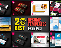 20 Best Resume Templates Free PSD