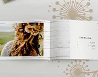 Dandelion catalogue design