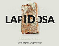 Webdesign Lapidosa