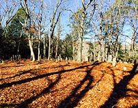 Cemetery Survey Lands Stonington a National Register