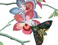 Bird, Moth on flowering tree