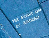 "Zine ""The Bright Side of Naujanai"""