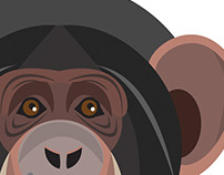 Vector Primates
