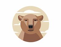 Bear دب