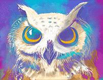 Watercolour - Adobe Fresco