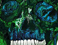 Skull No.6