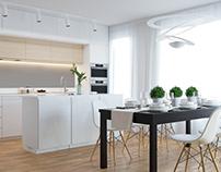Morden kitchen and living room. Prague 2017