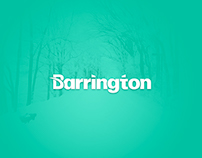 Barrington - Creative Branding Concept.