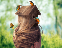 Birdhouse Hairstyle