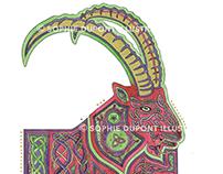 Celtic Knot - Bouquetin