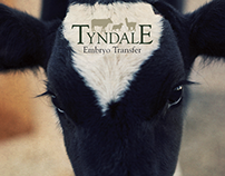 Tyndale Embryo Transfer Promotional Material