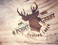 6 Point Crest - Branding Logo Design