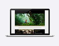 Zum Goldenen Hirschen – Webdesign