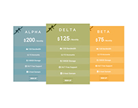 Boxes - CSS3 Responsive Table Price