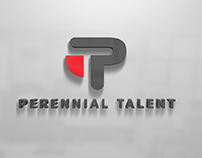 Professional services logo for a new HR based firm