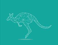 Kangaroo triangle line