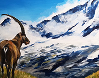 Gran Paradiso - Panorama with ibex