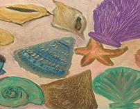 My seashell tray