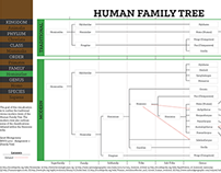 Context - Human Family Tree