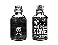 LRDP 'Here Today Gone Tomorrow'