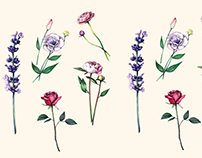 Botanical Illustrations: Flowers