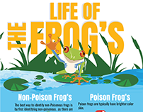 The Life Of Frogs