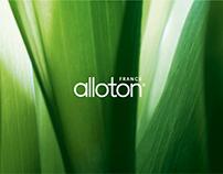 ALLOTON / Identity
