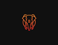 Vuyani - Identity Design