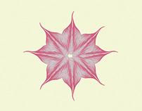 Linelike Flower
