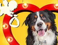 DOG'S TRUST - THE BIG SCOOP