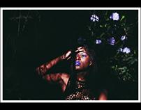 queen in forest   part.1